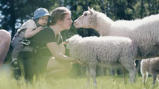 Norwegian agritech is making livestock farming better for the animals and the environment