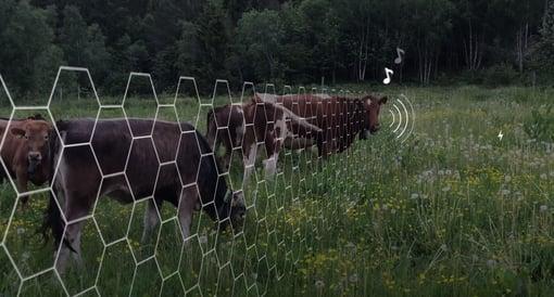 Lille Norge kan bli stor på teknologi for grønt landbruk